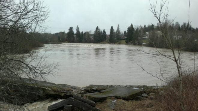 Tulvaa