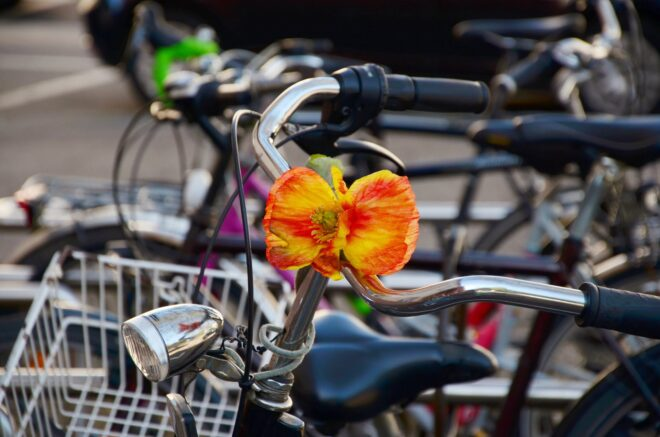 Polkupyörä, Pixabay