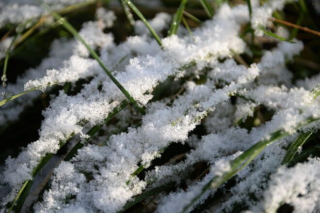 Lumi, ensilumi